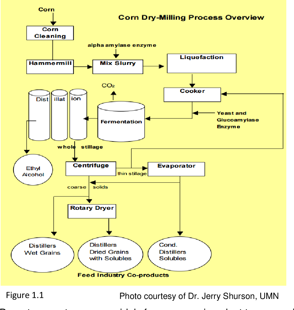 PDF] THE EFFECT OF PROCESSING METHOD OF DISTILLER'S DRIED