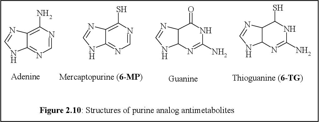 azithromycin thuốc