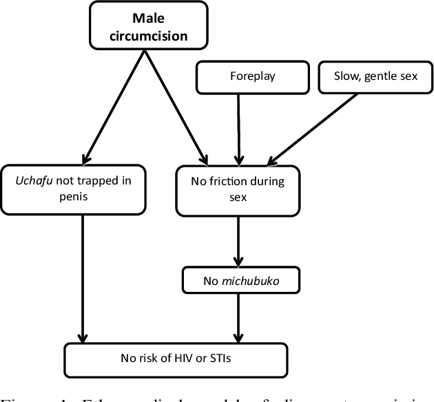 Figure 1 from Understanding the partial protection of male