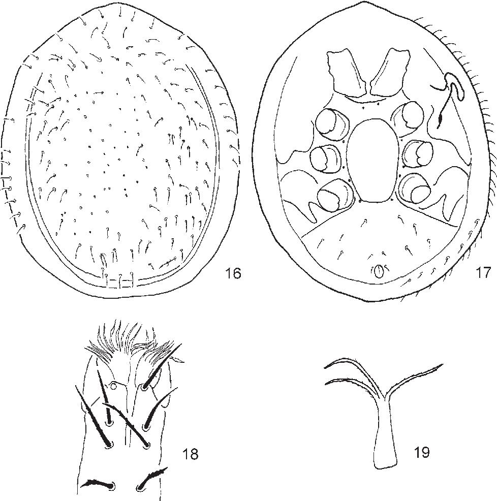 figure 16–19