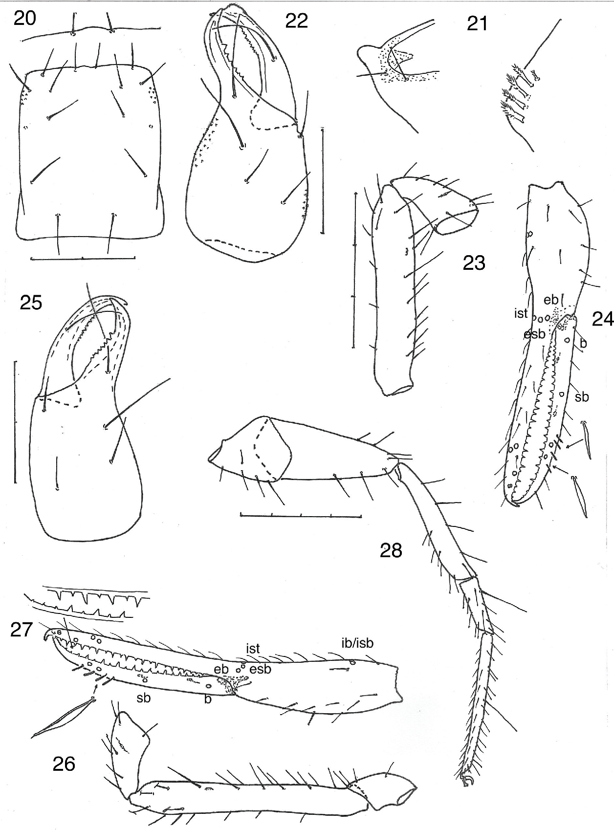 figure 20-24