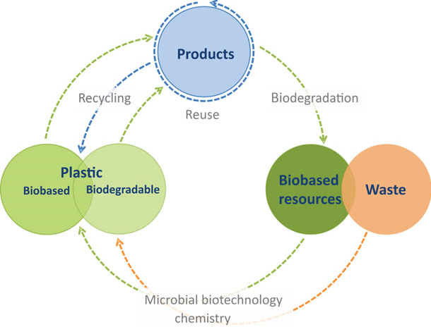 Microbial biotechnology addressing the plastic waste