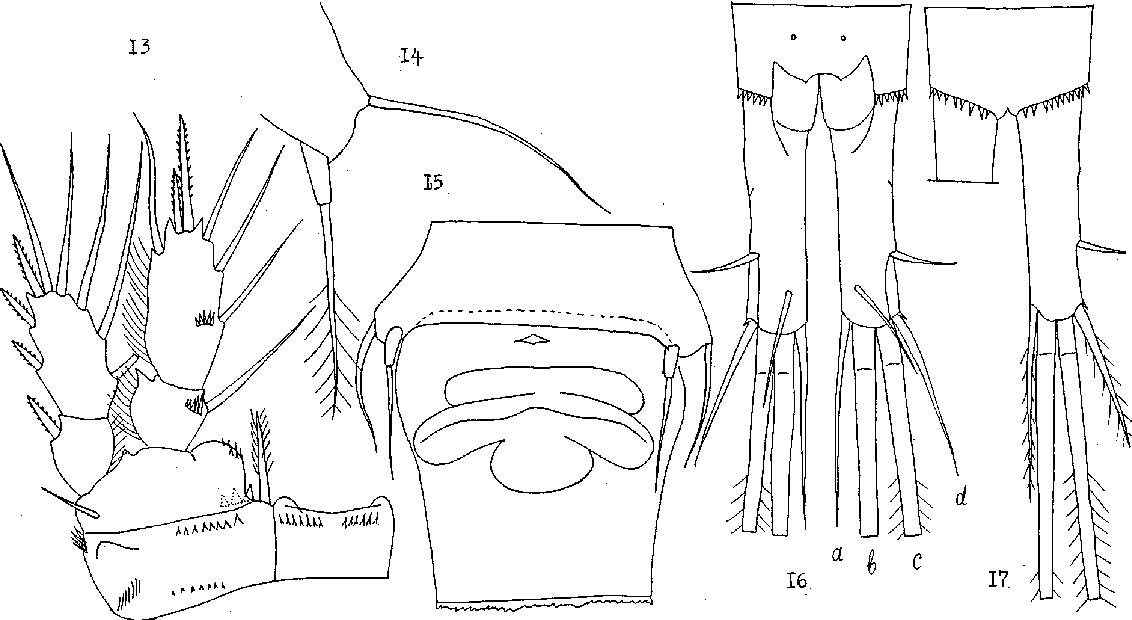 figure 13–17