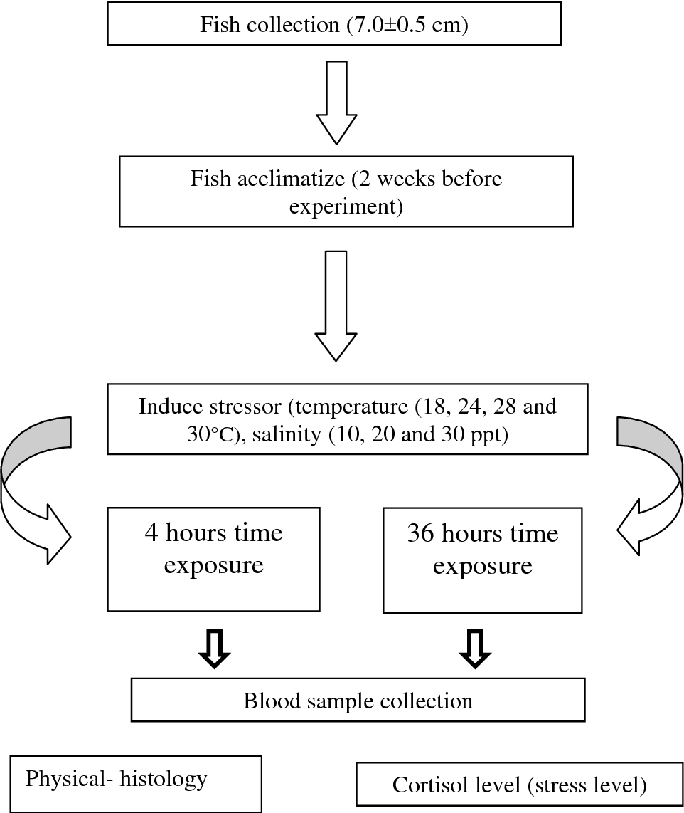 Figure 1 from Serum cortisol concentrations change in tiger