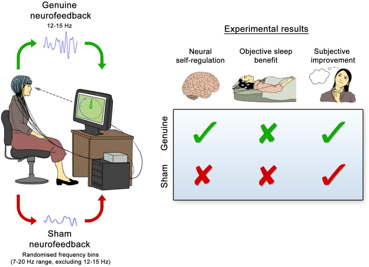PDF] Neurofeedback or neuroplacebo? - Semantic Scholar