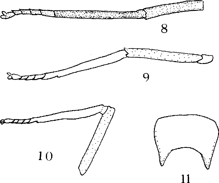 figure 8-11