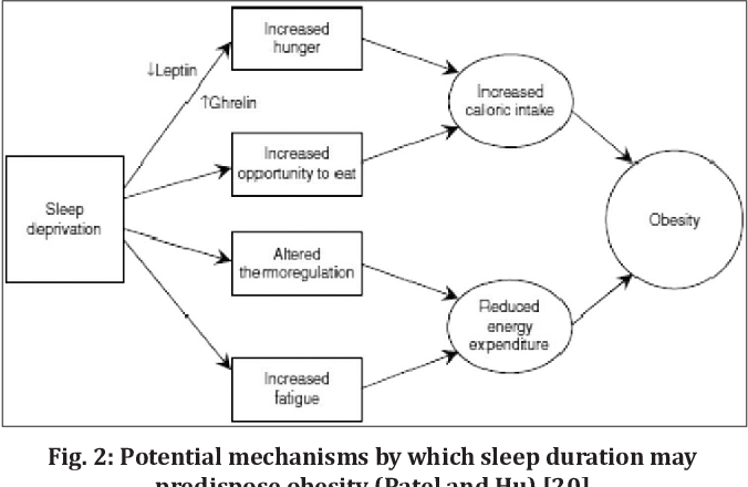 Association Between Short Sleep Duration And Obesity In Medical Students Semantic Scholar