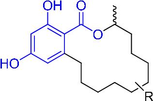 figure 1–1