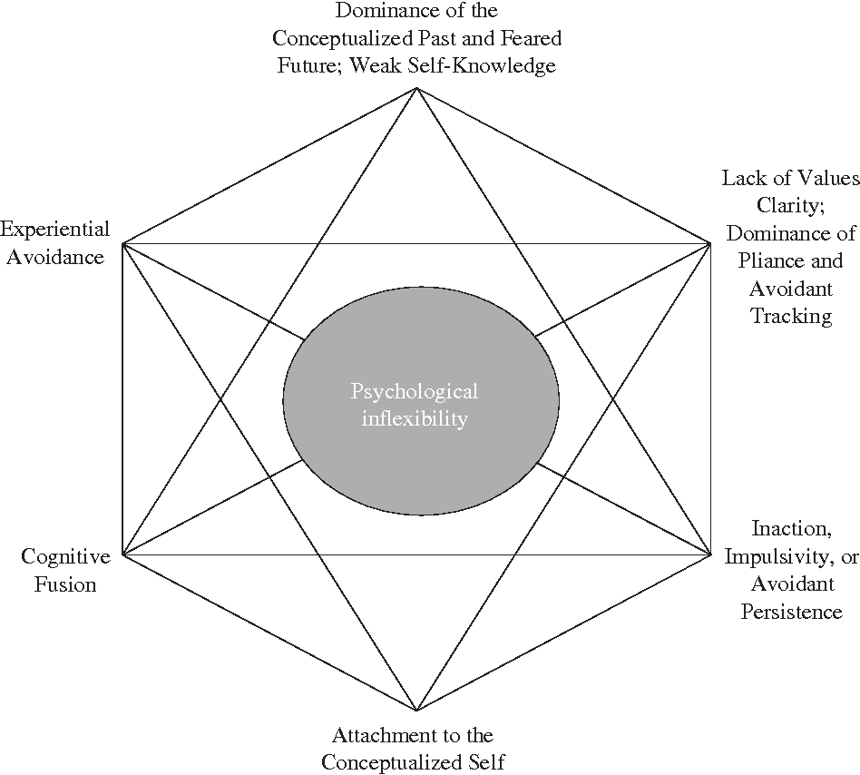 Acceptance and commitment therapy: model, processes and