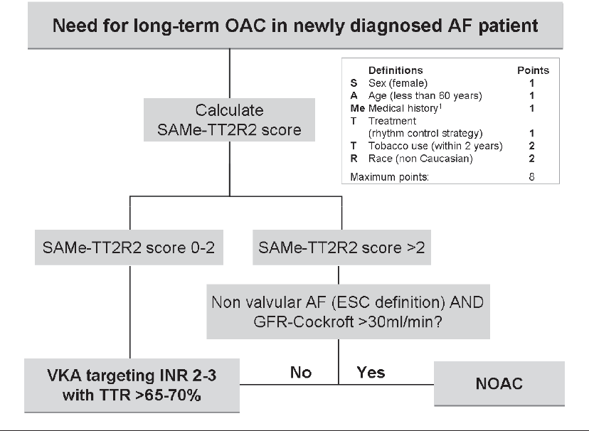 Figure 1: Choosing a strategy for oral anticoagulation in patients with non valvular AF using the SAMe-TT2R2 score. 1Medical history defined as more than two of the following: hypertension, diabetes, coronary artery disease/myocardial infarction, peripheral arterial disease, congestive heart failure, previous stroke, pulmonary disease, hepatic or renal disease. AF = atrial fibrillation; GFR = glomerular filtration rate; NOAC = non-VKA oral anticoagulant; VKA = vitamin K antagonists; TTR = time in therapeutic range.
