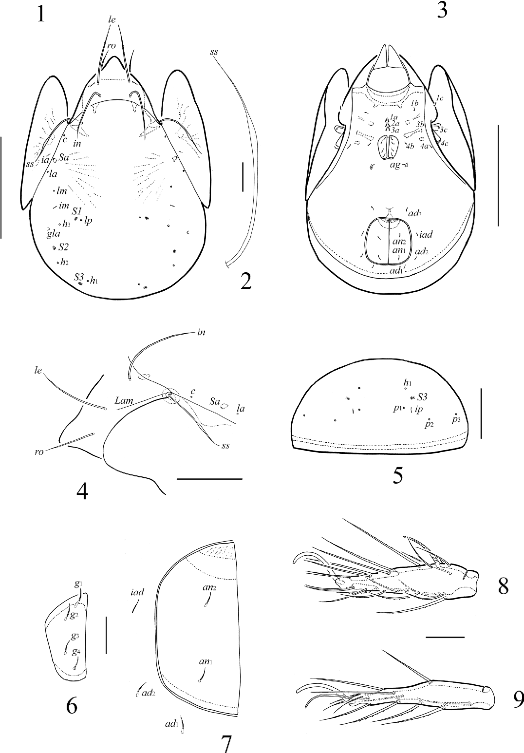 figure 1–9