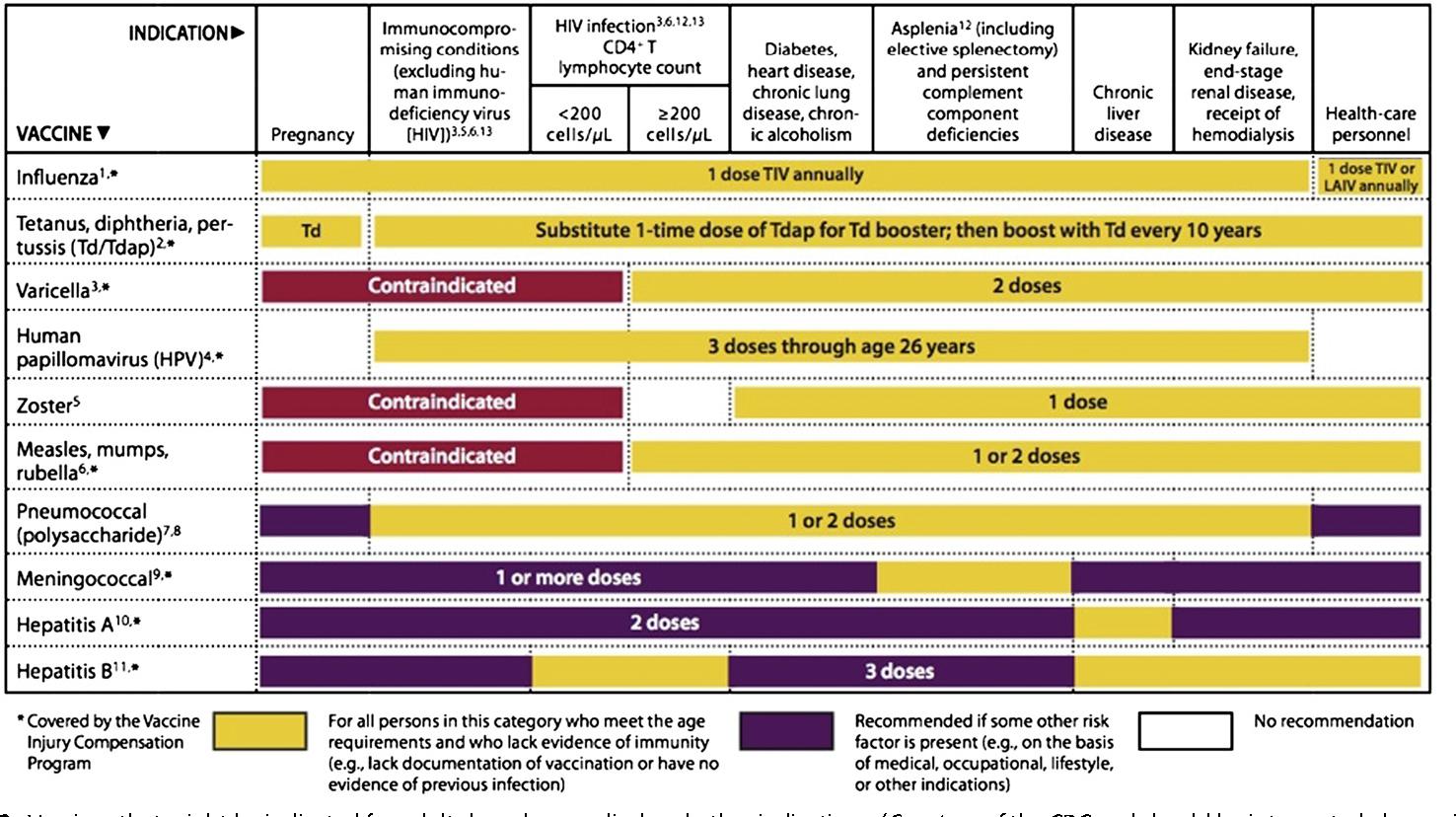 esquema+de+vacunacion+adultos+cdc