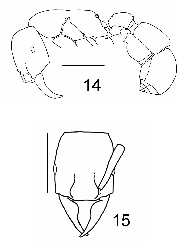figure 14-15
