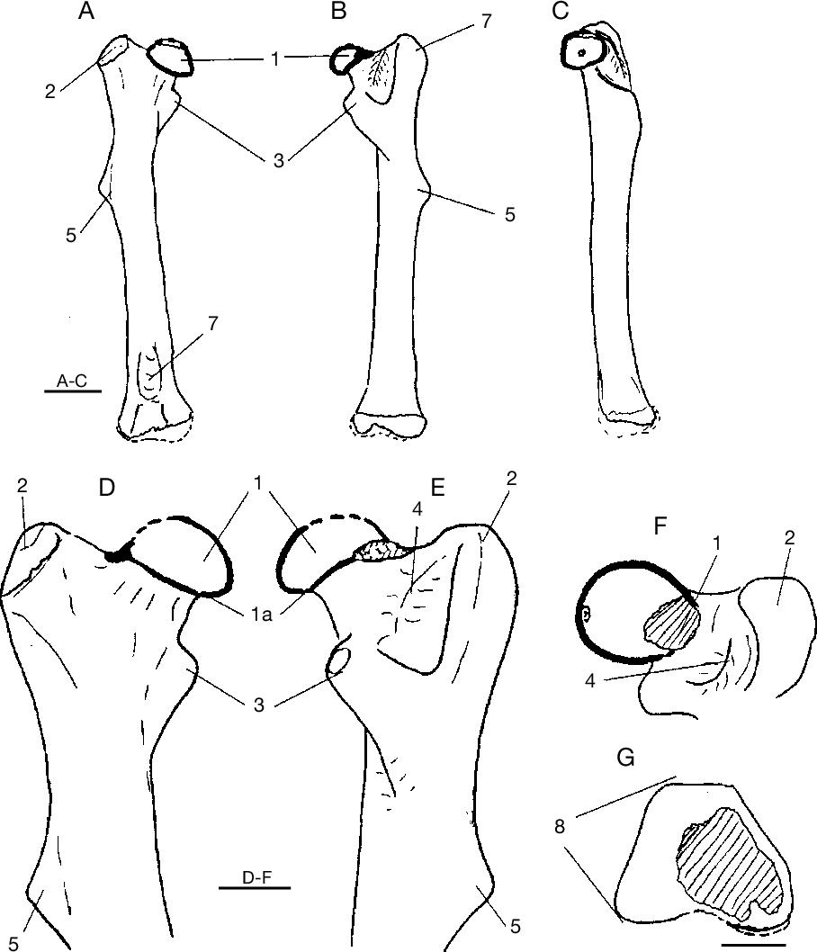 figure 58