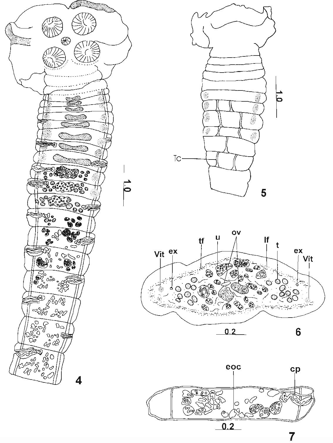 figure 4—7