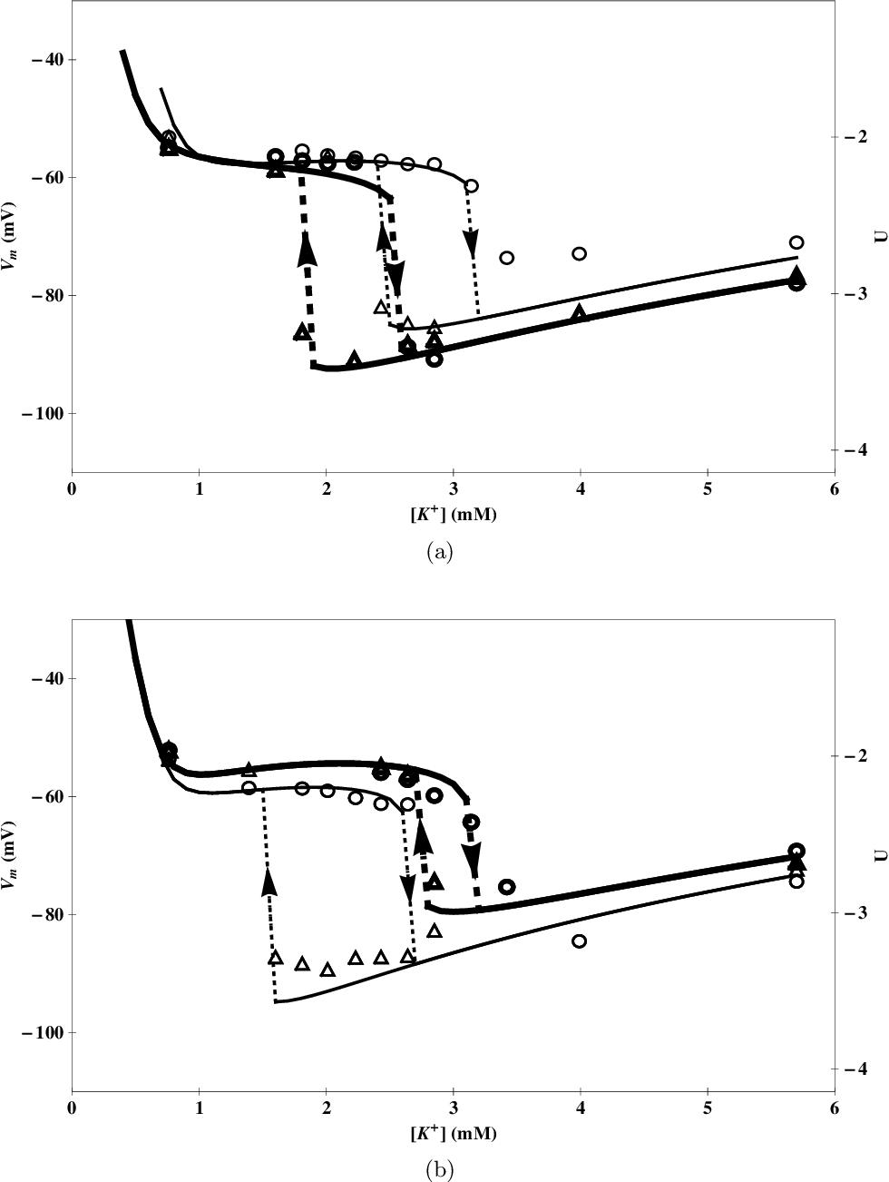 Ion traffic across cellular membranes | Semantic Scholar