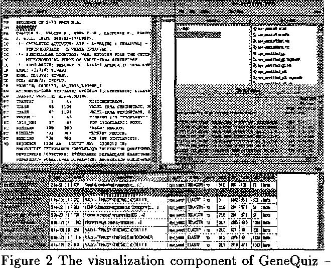 PDF] GeneQuiz: A Workbench for Sequence Analysis | Semantic Scholar