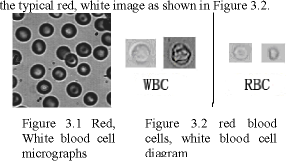 Figure 3 2 From Clustering Based Touching Cells Division