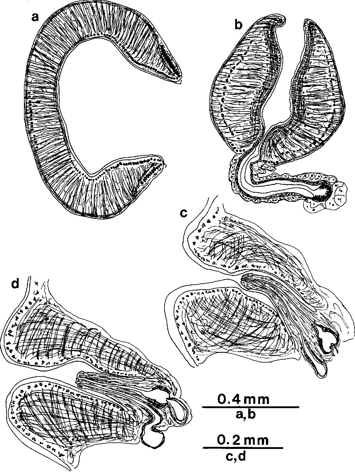 figure 162