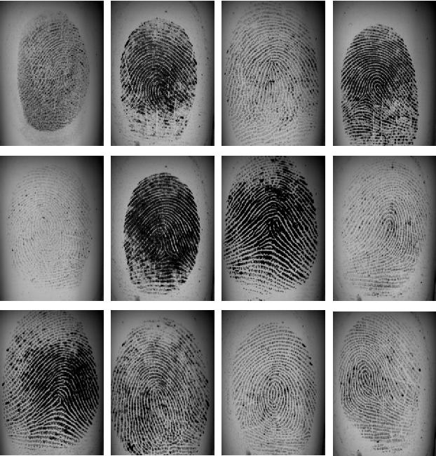 PDF] Finger-GAN: Generating Realistic Fingerprint Images