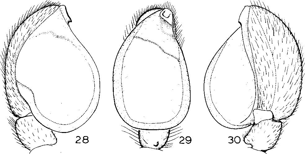 figure 25-30