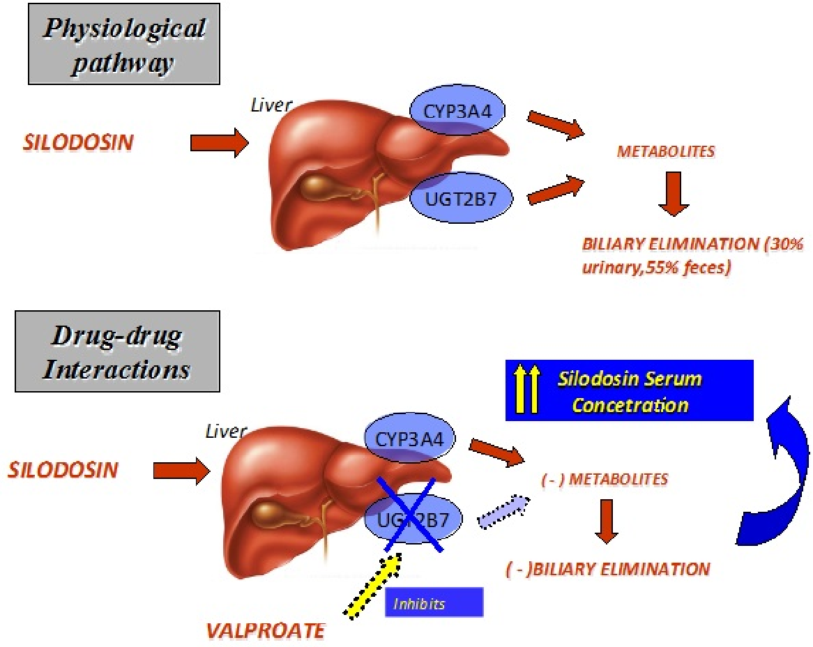 PDF] Itching Skin Rash during Valproic Acid Therapy in Co