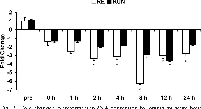 Fig. 2. Fold changes in myostatin mRNA expression following an acute bout of RE or RUN normalized to GAPDH mRNA and relative to preexercise levels. Total RNA was extracted from the muscle biopsies of the vastus lateralis (RE) or gastrocnemius (RUN). Values are means SE. *P 0.05 from preexercise mRNA expression.