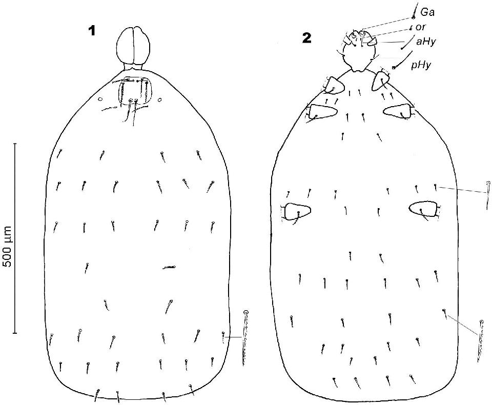 figure 1−2