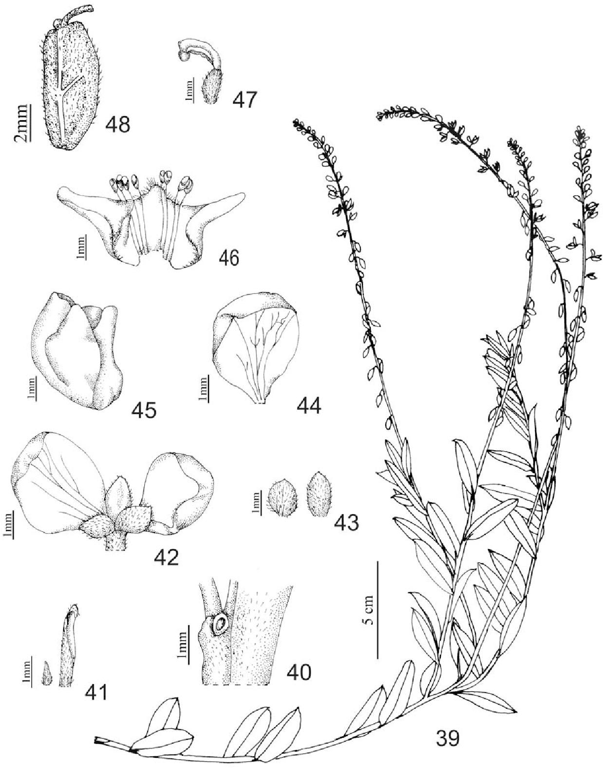 figure 39-48
