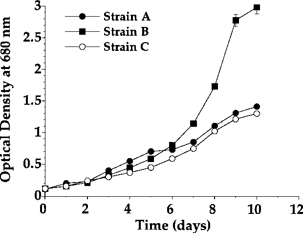 Fig. 2. Evolution of the optical density at 680 nm of the three strains of S. platensis tested during the laboratory phase of this study. Details of the culture conditions may be found in the text.