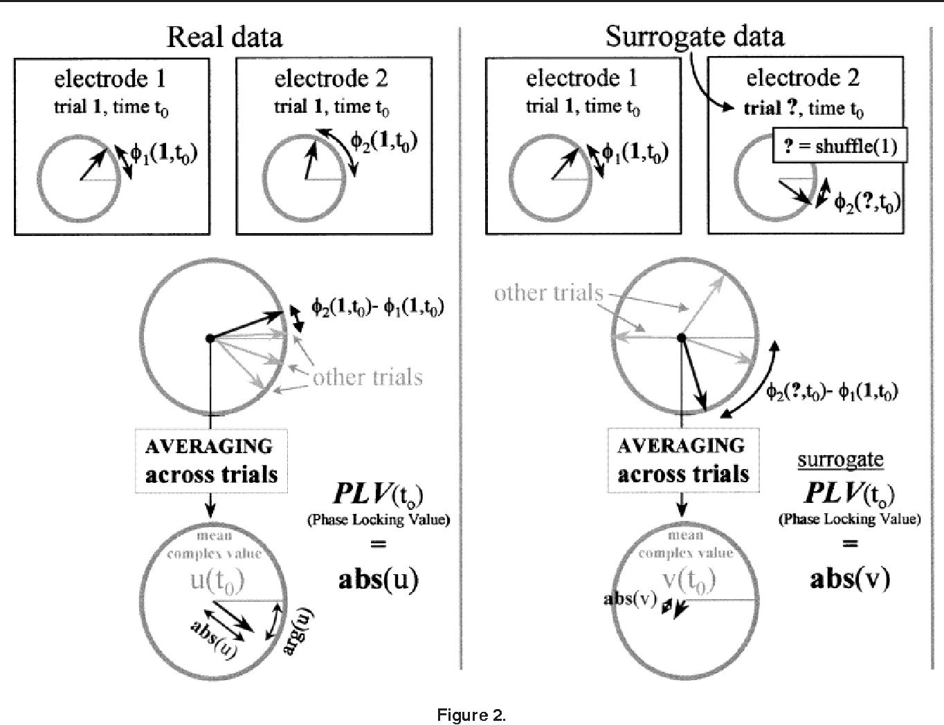 Figure 2 from Measuring phase synchrony in brain signals