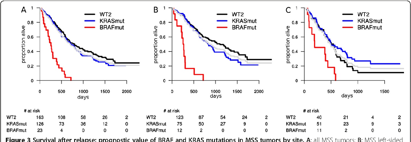 Figure 3 From Context Dependent Interpretation Of The Prognostic Value Of Braf And Kras Mutations In Colorectal Cancer Semantic Scholar