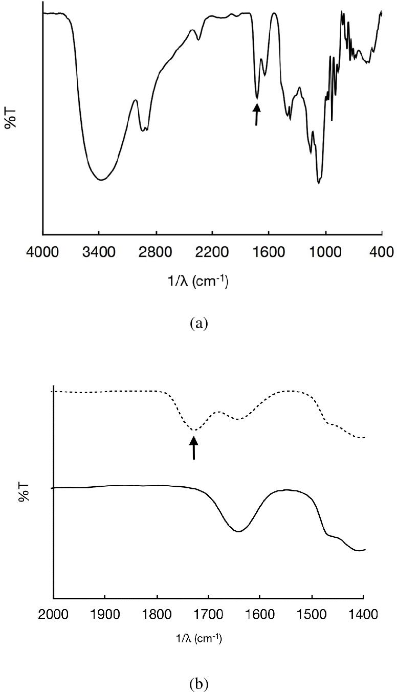 diagram batang ceo figure 2 from crosslinking of agarose bioplastic using citric acid  agarose bioplastic using citric acid