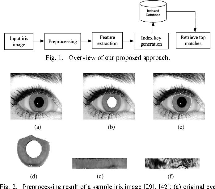 Figure 1 from Iris Data Indexing Method Using Gabor Energy