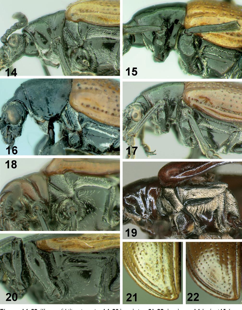 figure 14–22