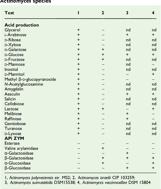 Pleasing Table 1 From Genome Sequence And Description Of Actinomyces Pabps2019 Chair Design Images Pabps2019Com