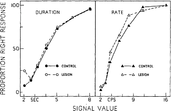Figure 4. The proportion of responses to the right lever as a function of signal duration (in s) and signal rate (in cps) for control rats and rats with lesions. (Data in the left panel are from the duration-relevant discrimination; data in the right panel are from the rate-relevant discrimination.)