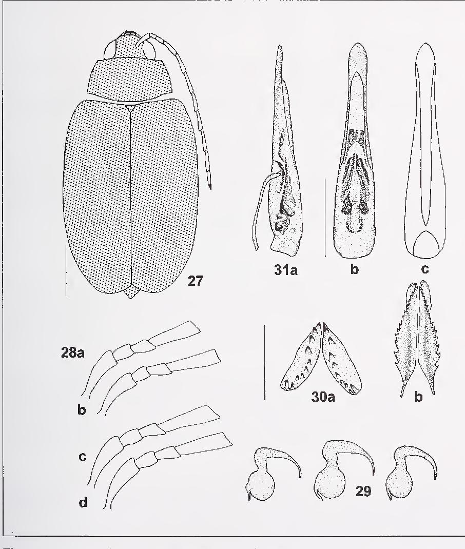 figure 27-31