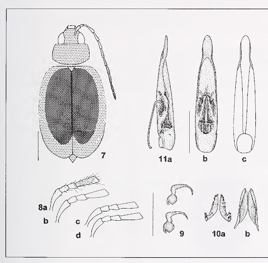 figure 7-1