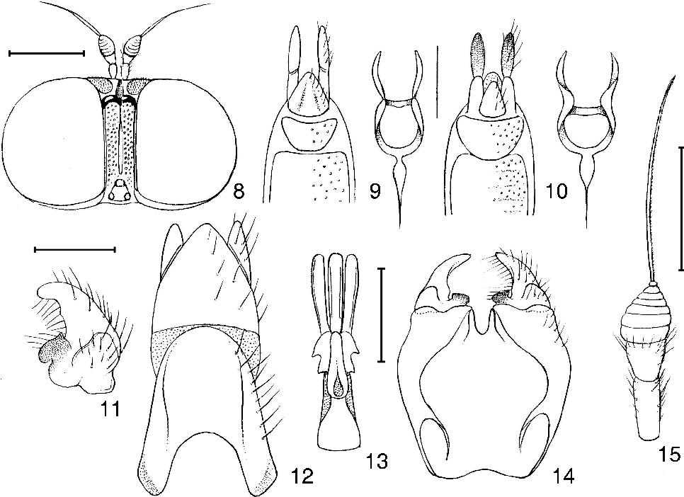 figure 8–15