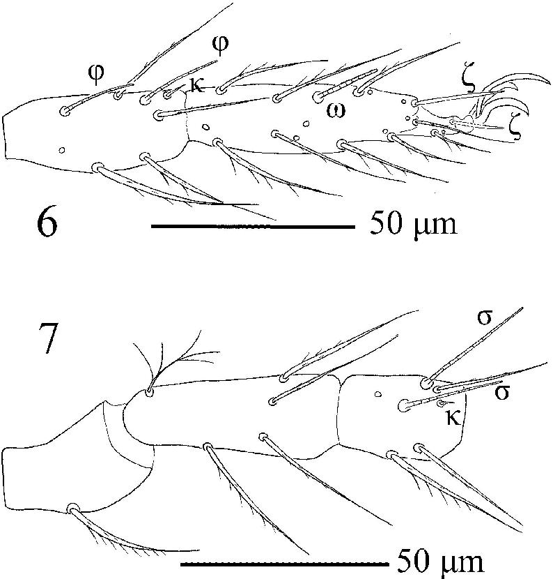 figure 6‒7