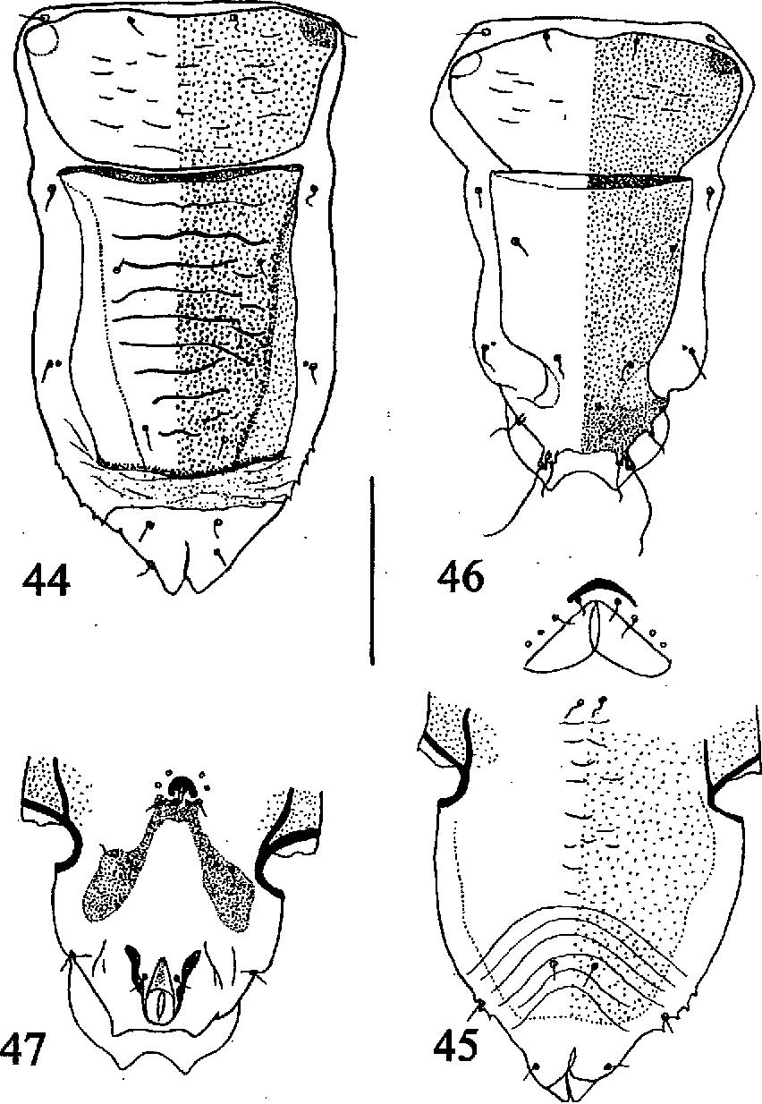 figure 44-47