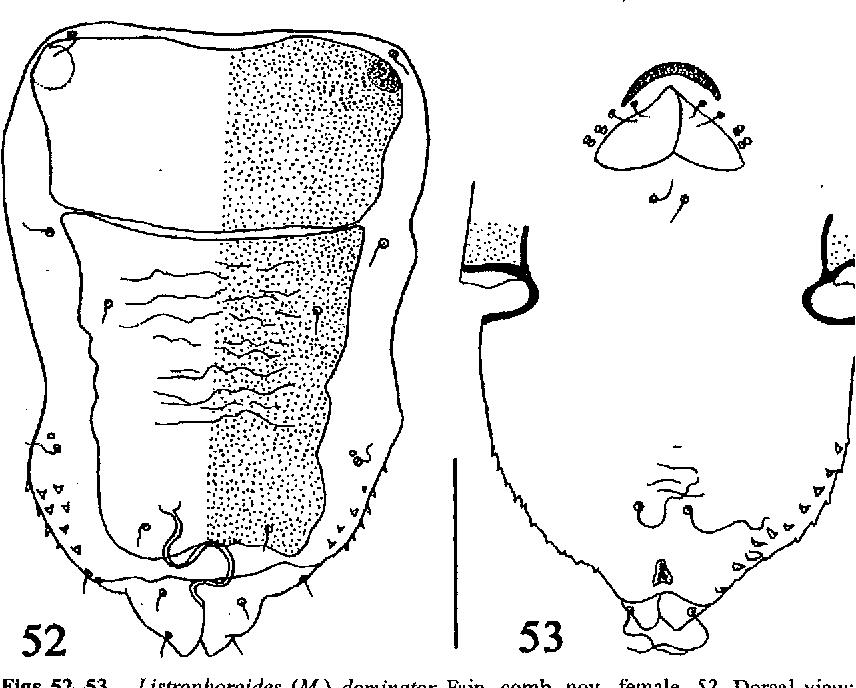 figure 52-53