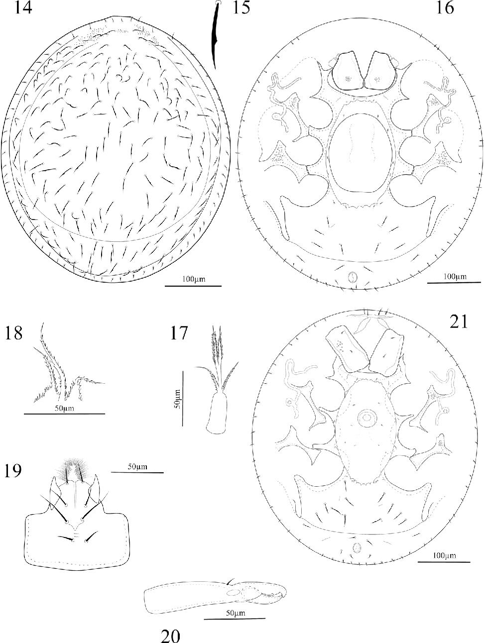 figure 14–21