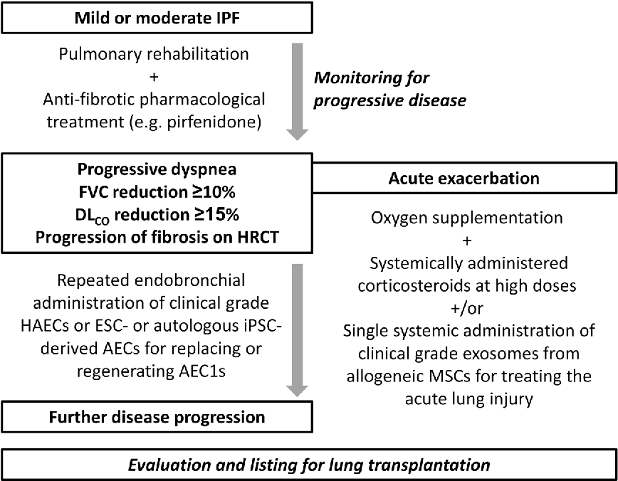 Figure 3 from Stem Cell-Based Therapy in Idiopathic