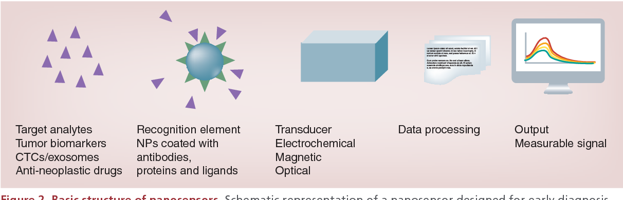 Figure 2 from Nanosensors for early cancer detection and for