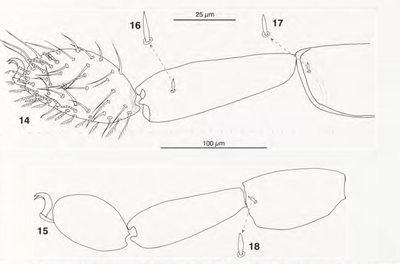 figure 14-18