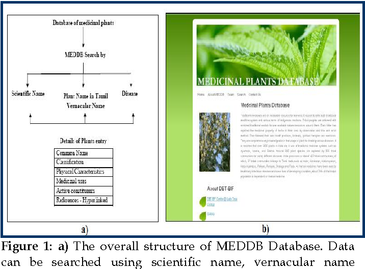Figure 1 from MEDDB: A medicinal plant database developed