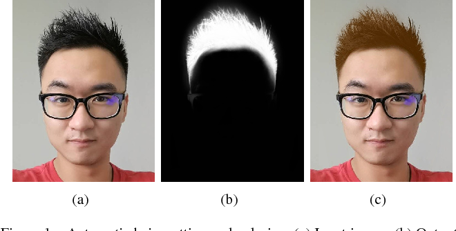 Figure 1 from Real-Time Deep Hair Matting on Mobile Devices