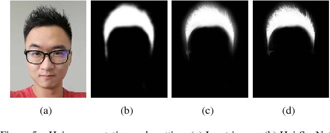 Figure 5 from Real-Time Deep Hair Matting on Mobile Devices
